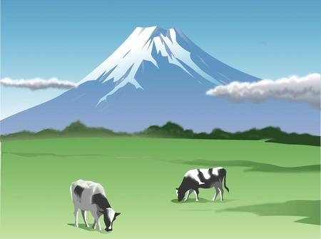 mountain landscape: Fuji ranch