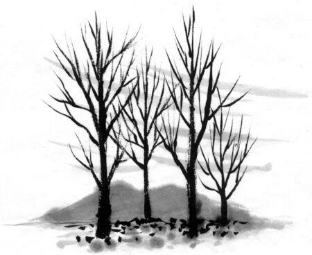 dead tree: Dead tree