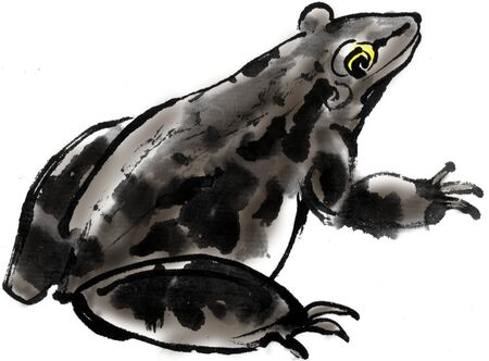 ink and wash: Frog Stock Photo