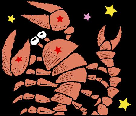 scorpion: Scorpion Stock Photo