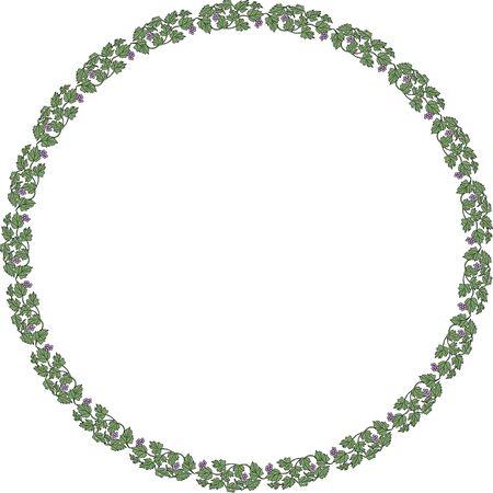 ブドウの円形飾りフレーム 写真素材
