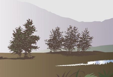 steppe: Grassland of fog