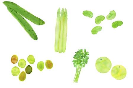familiy: Vegetables