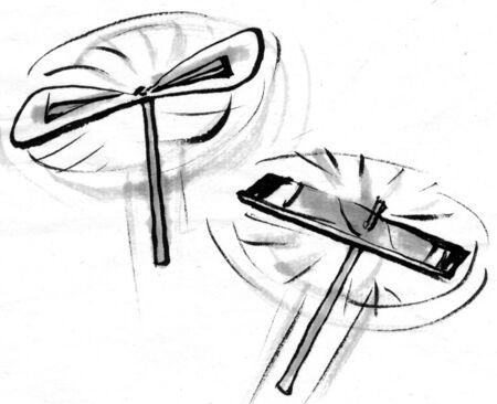 sumi: Bamboo dragonfly