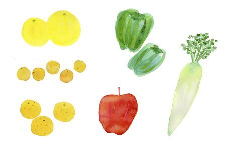 vegatables: Vegetables