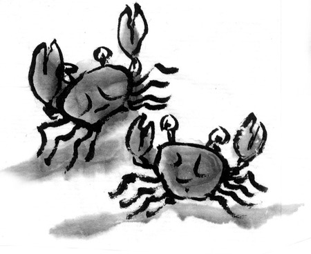ink and wash: Crab