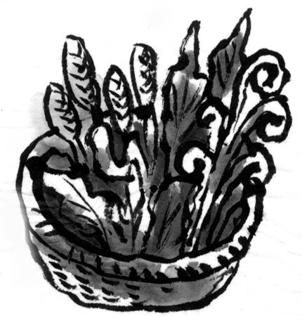 ink and wash: Edible wild plants