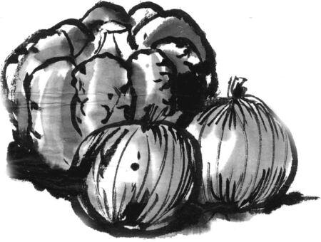 ink and wash: Pumpkin Stock Photo