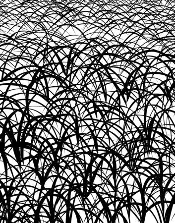 grasslands: Grass pattern