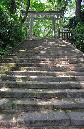 accomplishments: Early summer of Sakata-Hikarigaoka shrine Stock Photo