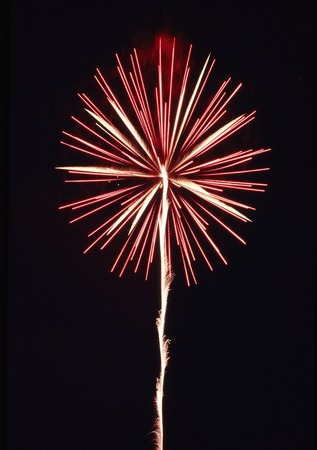 straight up: Straight up pink fireworks Stock Photo