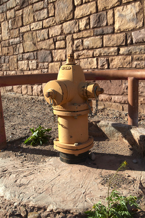 fire hydrant: Yellow and painted fire hydrant