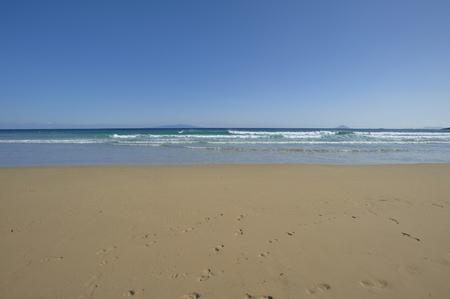 sandy beaches: White sandy beaches and green sea Stock Photo