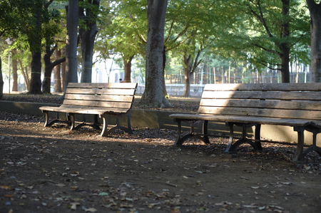 early morning: It falls on the early morning of the park bench Asahi
