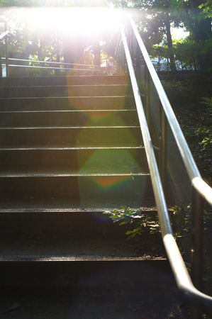 dazzling: Stairs of backlight dazzling park