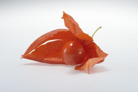fruitschaal: Nightshade fruit