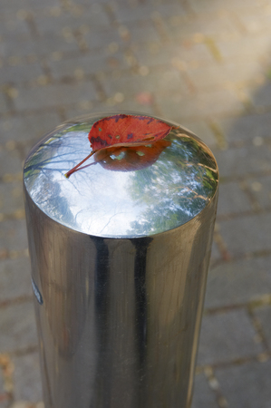 remained: Fallen leaves of red cherry remained on the sidewalk of Paul Stock Photo