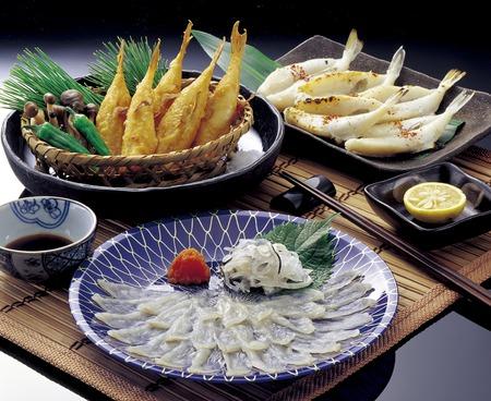pez globo: El sashimi de pez globo se seca y fugu frito y fugu noche