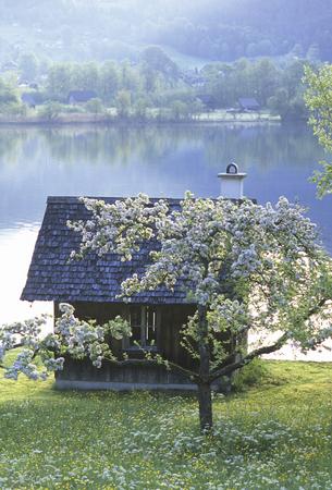 lakeside: Hallstatt lakeside cabin and wood Stock Photo