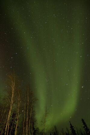 auroral: Canada, Yellowknife Aurora Stock Photo