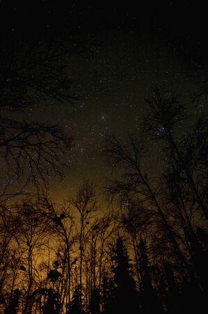 cielo estrellado: Canad� Yellowknife cielo estrellado Foto de archivo