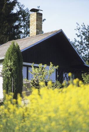 cottages: Rape field and cottages Stock Photo