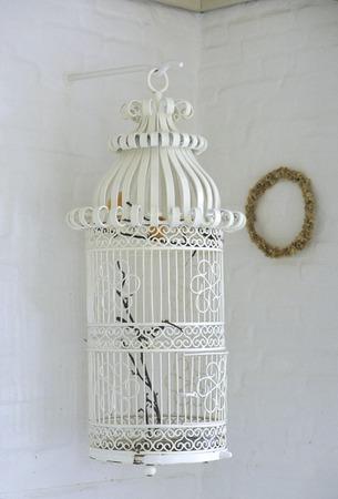 birdcage: White birdcage
