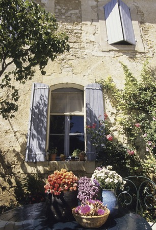 french doors: Windows and herbs