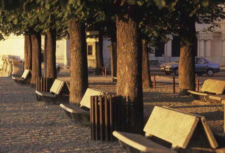 tonto: Bench ma�ana Fool Vie Yale Square Foto de archivo