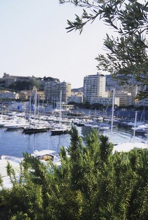 carlo: Monte Carlo harbor yacht
