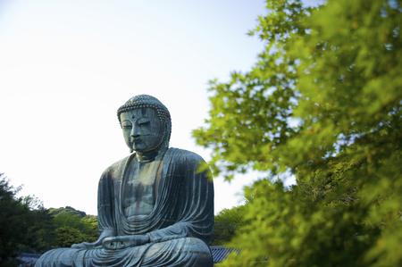 hase: Kamakura great Buddha