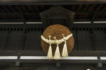 unveiling: Cedar balls Stock Photo