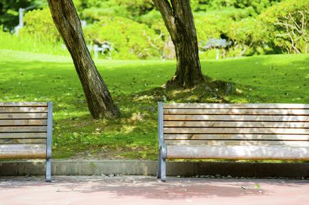 to shade: Bench and shade