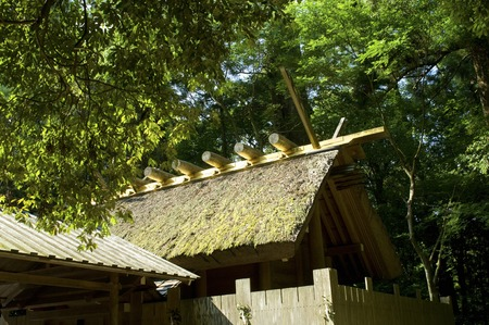 precinct: The roof of the Ise Shrine Betsumiya wind Date Inomiya