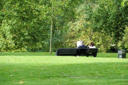 green park: Green Park Bench