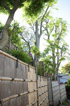 Fence 写真素材