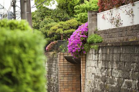 superficie: Daita Setagaya-Ku zona residencial
