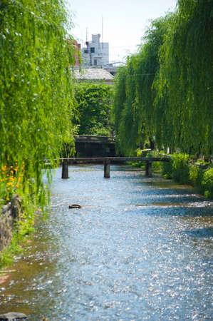 shirakawa: Shirakawa of log bridge Stock Photo
