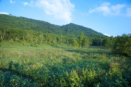 moor: Maeyama Moor Stock Photo