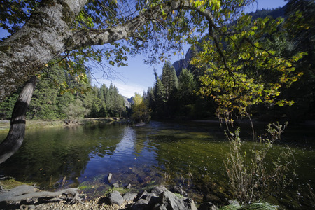 merced: The Merced River Yosemite Valley landscape