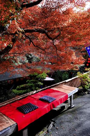 teahouse: Autumn teahouse