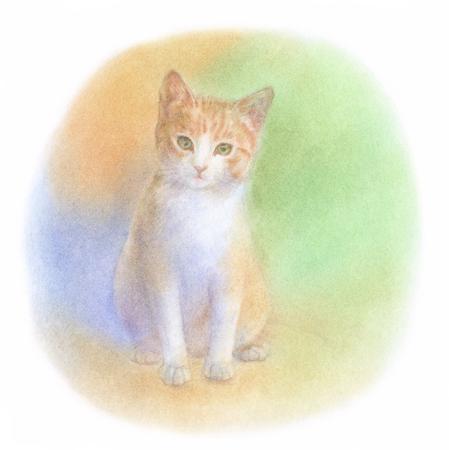living organism: kitten sitting Stock Photo
