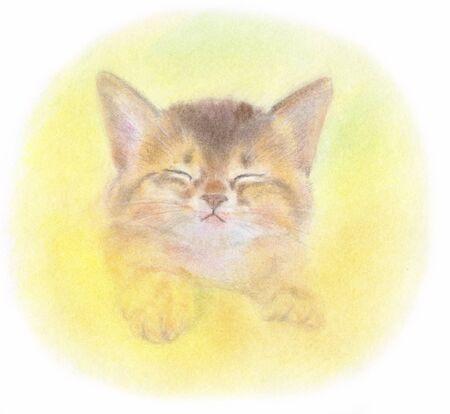 living organism: kitten to dream