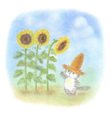 straw hat: Cat Sunflower was wearing a straw hat
