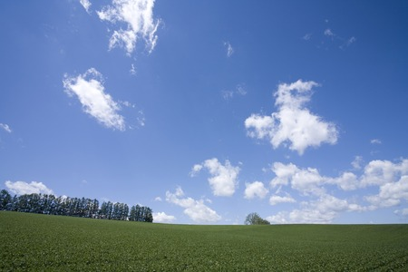 magnificence: Trees hills and cloud Stock Photo