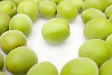 緑の梅 写真素材