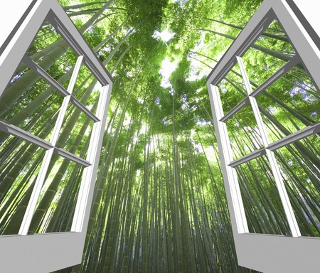 view through door: Bamboo forest from window Stock Photo