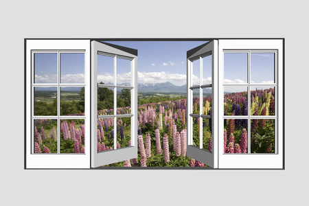 garden scenery: Lupine from windows and Tokachi mountain range Stock Photo