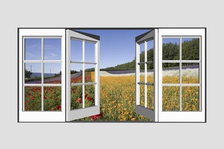 window seal: From the window Farm Tomita