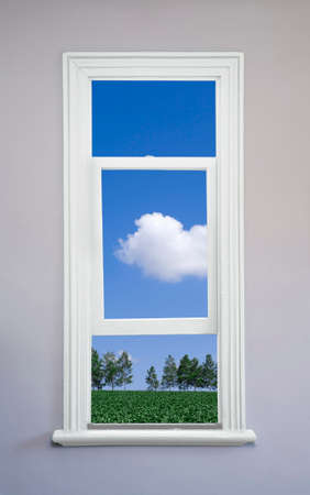 sunroom: Namiki from white window